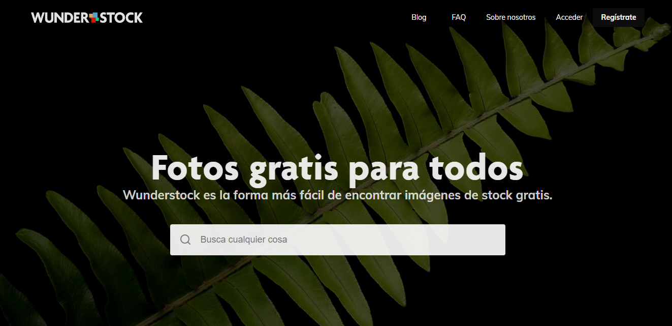 7 mejores bancos de imágenes gratuitos